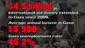 Hamas by the Numbers